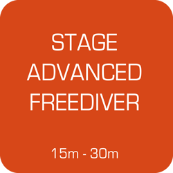 GPSC Stage Apnée Advanced Freediver du 2 au 4 juin 2018