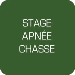 Stage chasse sous-marine le 2 avril 2017